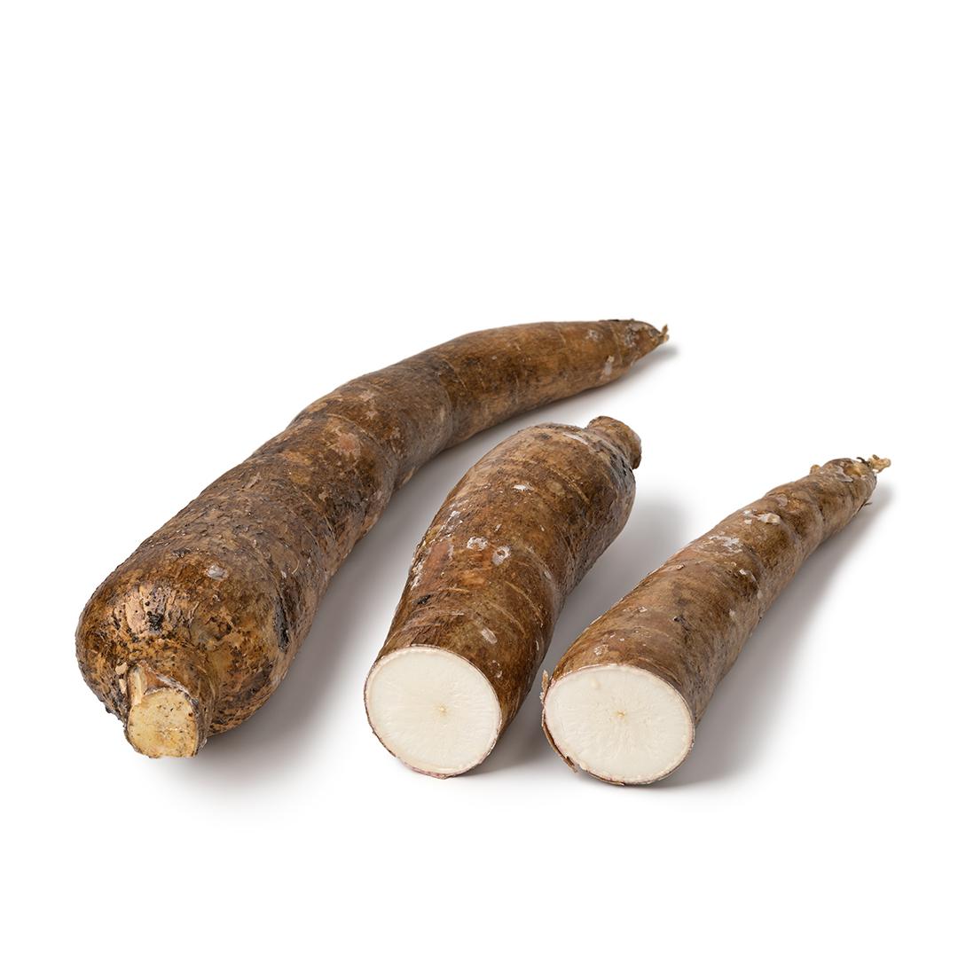 yuca-mandioca