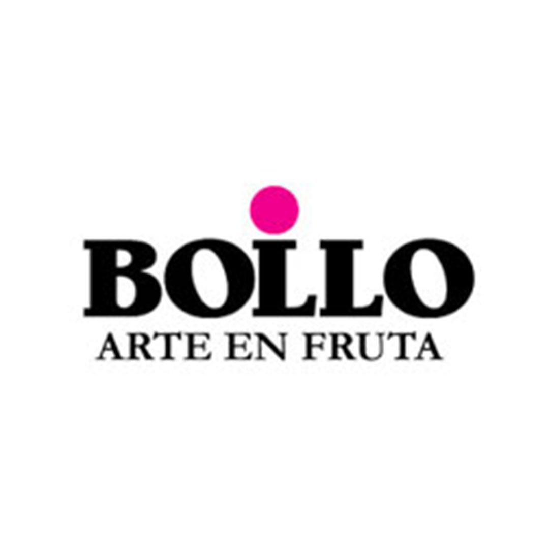 bollo-logo