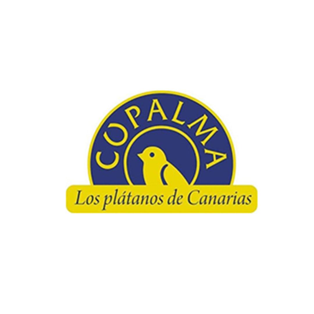 cupalma-logo