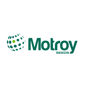 motroy-seeds-logo